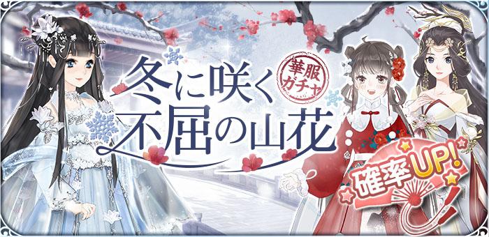 700-340冬花.jpg